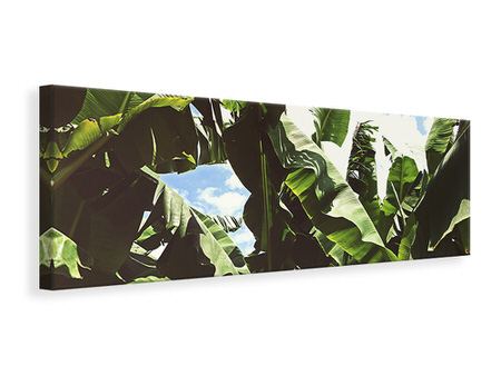 Panoramic Canvas Print In the middle of the jungle