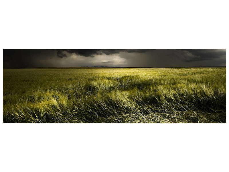 Panoramic Canvas Print Summer Weather