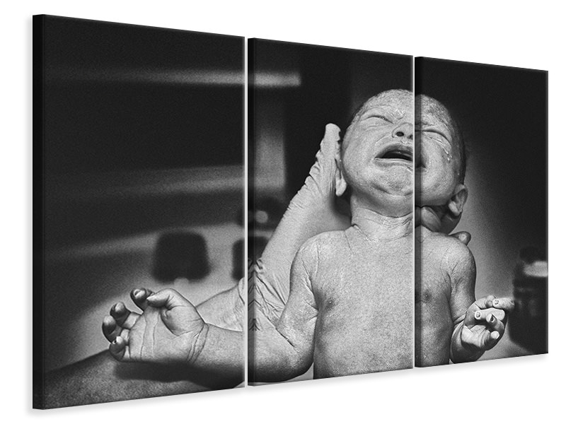 3 Piece Canvas Print No Words To Describe The Feeling