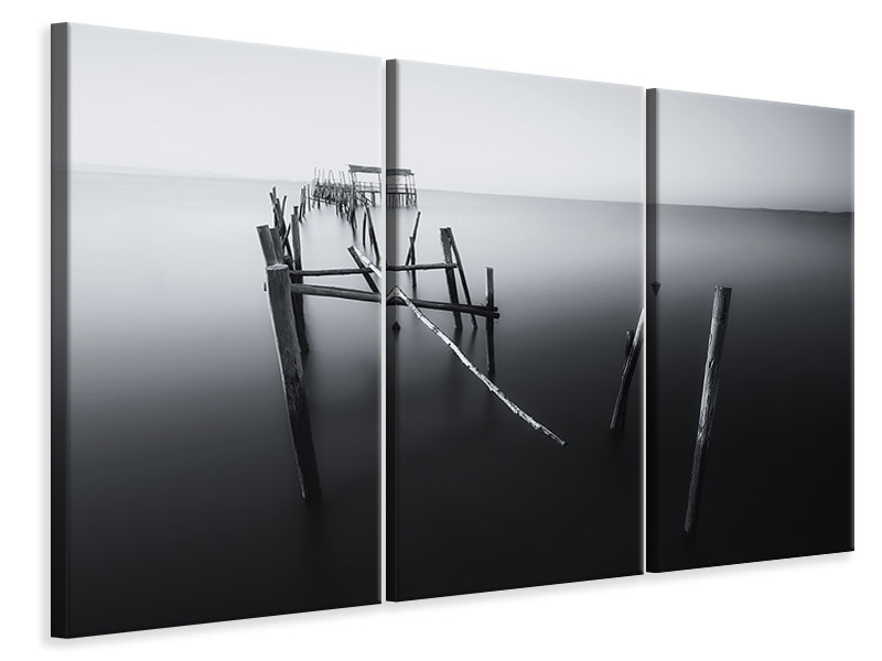 3 Piece Canvas Print Carrasqueira In Black And White