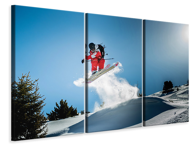 3 Piece Canvas Print Max Vince Shifty