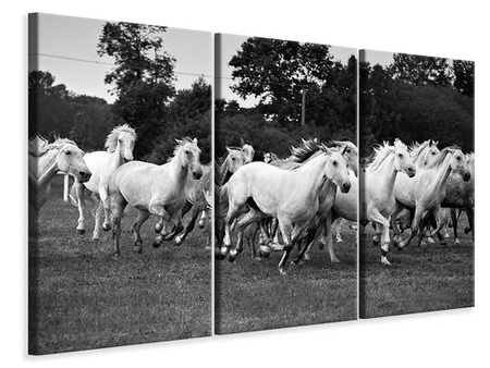 3 Piece Canvas Print The Mustang Herd