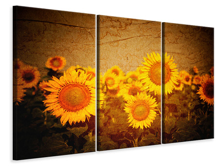 3 Piece Canvas Print Retro Sunflower