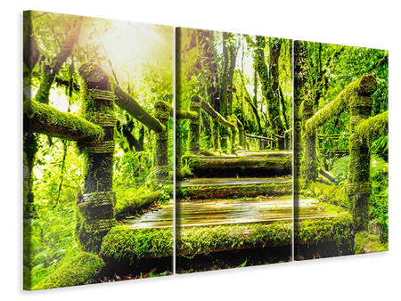 3 Piece Canvas Print Moss