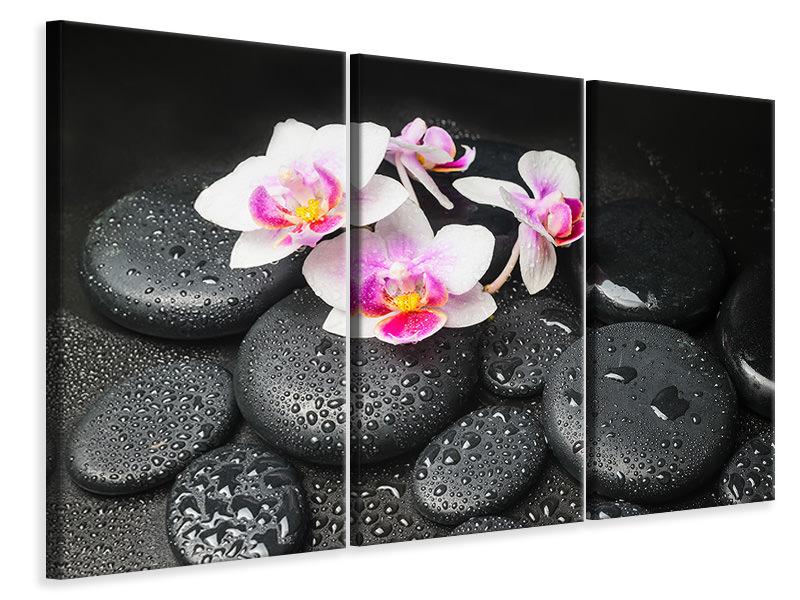 Leinwandbild 3-teilig Feng-Shui-Orchidee Zen