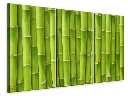 3 Piece Canvas Print Bamboo Wall