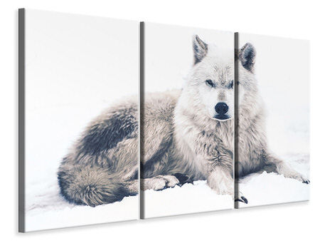 3 Piece Canvas Print The Wolf