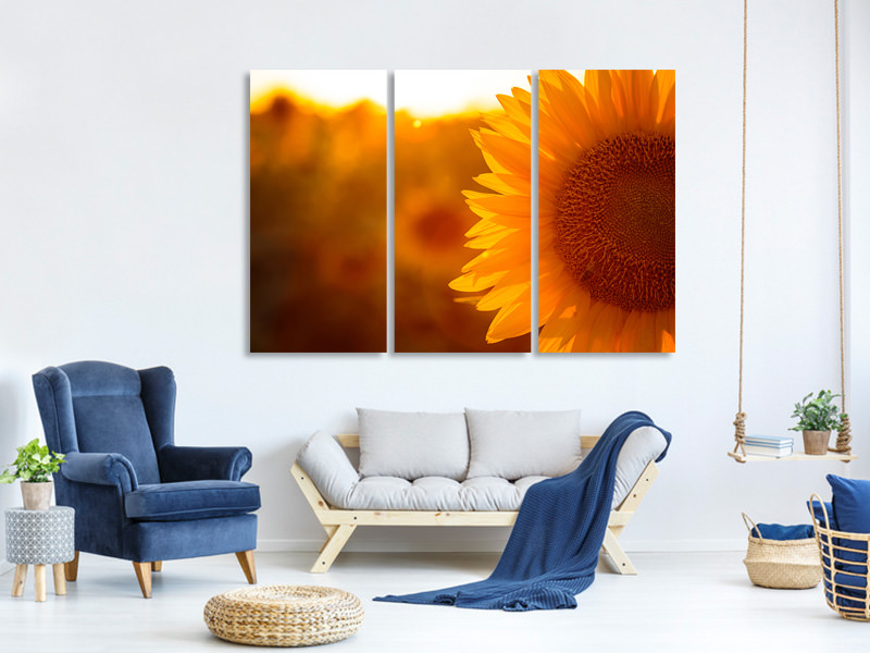 3 Piece Canvas Print Macro Sunflower