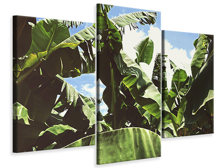 Modern 3 Piece Canvas Print In the middle of the jungle
