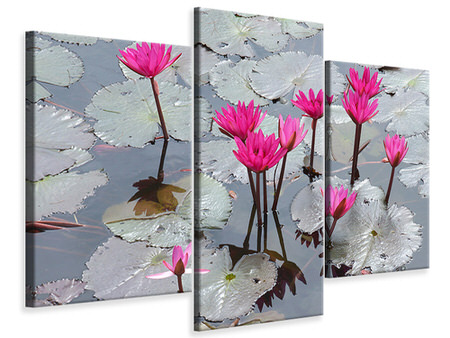 Modern 3 Piece Canvas Print Jump In The Lily Pond