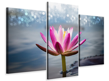 Modern 3 Piece Canvas Print Lotus In The Morning Dew