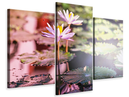 Modern 3 Piece Canvas Print Lilies In Pond