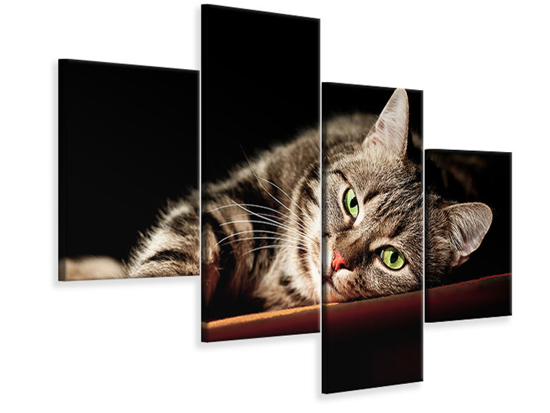 Leinwandbild 4-teilig modern Entspannte Katze