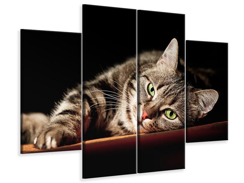 Leinwandbild 4-teilig Entspannte Katze