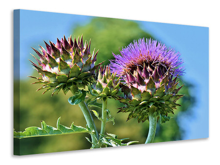 Canvas print The artichoke XL