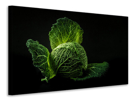 Canvas print The cabbage