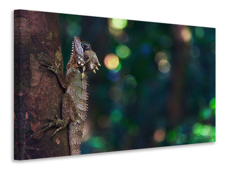 Canvas print The lizard