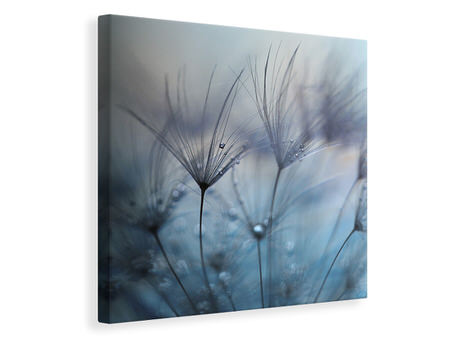 Canvas print Teardrops