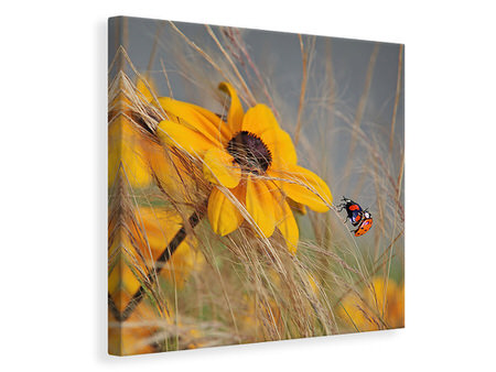 Canvas print Colors Of Summer II