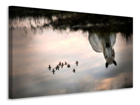 Canvas print Fly