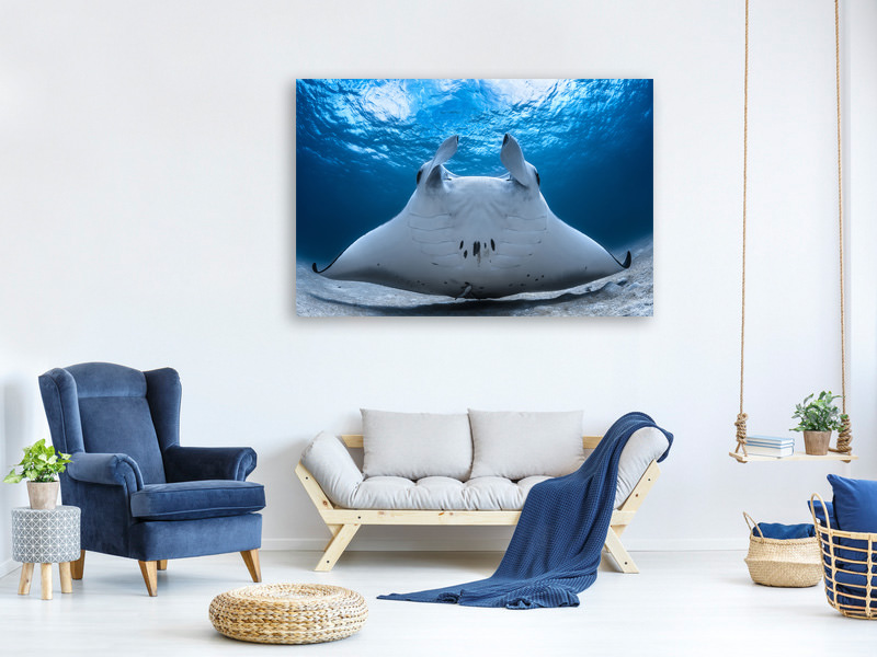 Canvas print Take Off / Manta Airline
