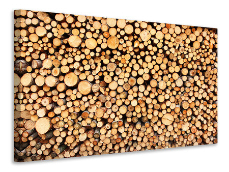 Canvas print Logs
