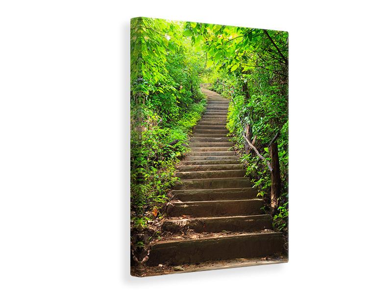 Leinwandbild Waldtreppe