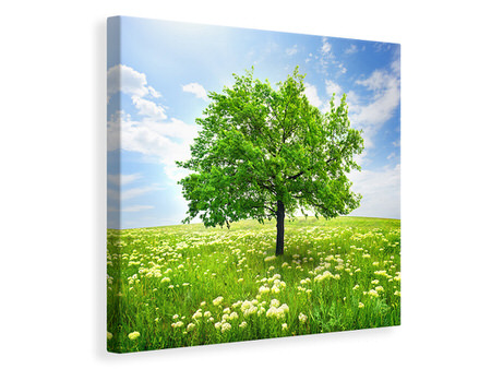 Canvas print The Tree