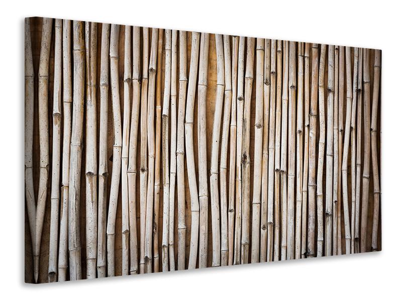Leinwandbild Getrocknete Bambusrohre