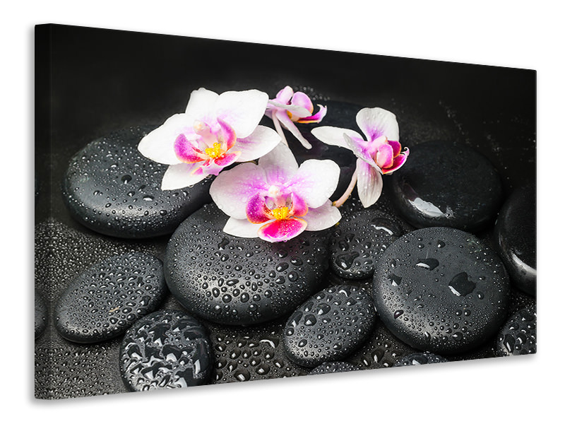 Leinwandbild Feng-Shui-Orchidee Zen