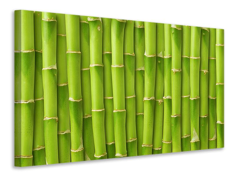 Leinwandbild Bambuswand