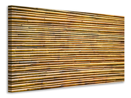 Canvas print Horizontal Bamboo Wall