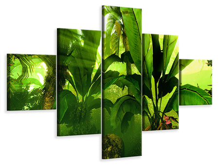 5 Piece Canvas Print Sunrise In The Rainforest